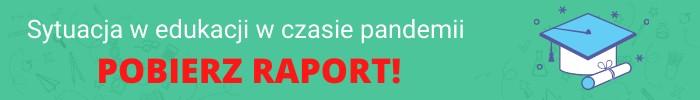 Raport20202