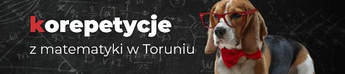 korepetycje.torun.pl