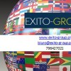 Exito Group
